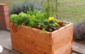 Grow anything with the Haut-Potager Kitchen Garden Kit on Kickstarter
