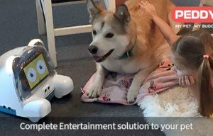 Peddy, Your Pet's Home Entertainment Robot, Launches on Kickstarter