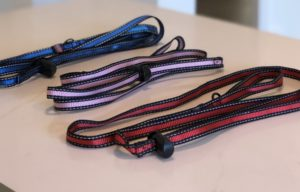 """Introducing Toggle Leash """"The Convenient And Easy On The Go Leash That Doesn't Require A Collar."""""""