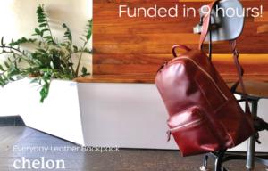 Everlane Alum Created Perfect Minimalist Leather Backpack Under $250